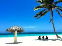 Spiaggia sabbiosa incontaminata con la palma, palapa, turisti fotografie stock