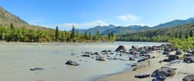 Spiaggia sabbiosa sul fiume Katun, montagne Siberia, Russia di Altai Fotografia Stock Libera da Diritti