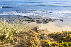 Spiaggia in Santa Barbara Fotografia Stock Libera da Diritti