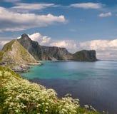 Spiaggia scenica sulle isole di Lofoten immagini stock