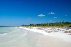 Spiaggia selvaggia Fotografie Stock