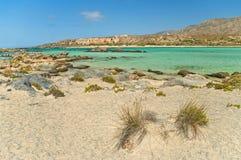 Spiaggia selvaggia alla laguna blu con le rocce e le piante Immagini Stock