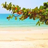 Spiaggia in Sihanoukville Fotografie Stock Libere da Diritti