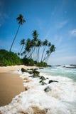 Spiaggia soleggiata con le palme nello Sri Lanka Immagine Stock