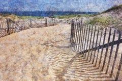 Spiaggia su Cape Cod Fotografia Stock