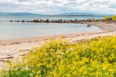 Spiaggia su Galway South Park con l'isola del montone nel fondo immagini stock libere da diritti