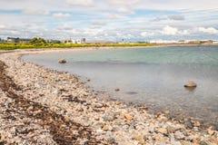 Spiaggia su Galway South Park con le rocce ed i fiori gialli immagine stock