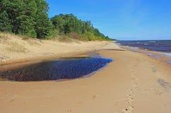Spiaggia sul lago Peipsi Immagini Stock