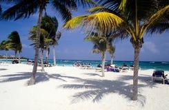 Spiaggia sul Riviera Mayan Fotografia Stock Libera da Diritti