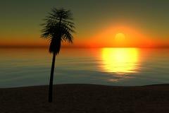 Spiaggia sul tramonto Immagine Stock