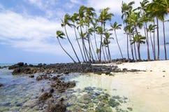 Spiaggia sull'Hawai Fotografia Stock Libera da Diritti