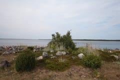 Spiaggia sull'isola di Solovetsky, Russia Fotografie Stock Libere da Diritti