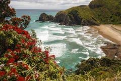 Spiaggia sulla costa della Nuova Zelanda fotografia stock libera da diritti