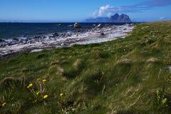 Spiaggia sulle isole di Lofoten Immagine Stock Libera da Diritti