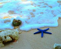 spiaggia Sumatra kiluan Fotografie Stock Libere da Diritti