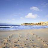 Spiaggia Sydney Australia Foodtprints e spuma di Bondi Fotografie Stock