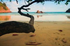 Spiaggia in Tailandia Immagine Stock Libera da Diritti
