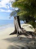 Spiaggia/Tailandia di Klong Prao Fotografia Stock