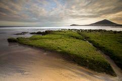 Spiaggia Tenerife di EL Medano Immagini Stock Libere da Diritti