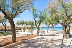Spiaggia Terme, Apulia - árvores e pára-sóis na praia Imagem de Stock Royalty Free