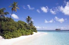 Spiaggia tropicale. Immagine Stock