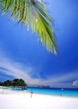 Spiaggia tropicale Immagini Stock