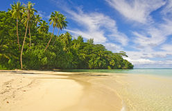 Spiaggia tropicale Fotografia Stock