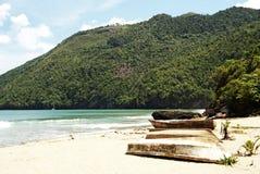 Spiaggia tropicale in Cayo Levantado, Repubblica dominicana Fotografia Stock Libera da Diritti