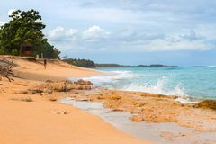 Spiaggia tropicale con l'oceano giallo sabbia e azzurrato e gli alberi verdi fotografie stock