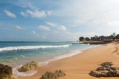Spiaggia tropicale con l'oceano giallo sabbia e azzurrato e gli alberi verdi fotografie stock libere da diritti