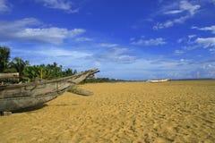 Spiaggia tropicale con la palma Immagini Stock Libere da Diritti