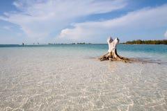 Spiaggia tropicale con la sabbia bianca Fotografia Stock