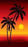 Spiaggia tropicale con le palme royalty illustrazione gratis