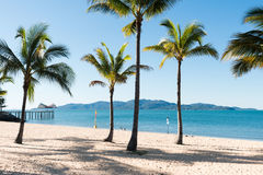Spiaggia tropicale con le palme di noce di cocco Fotografia Stock Libera da Diritti