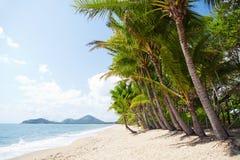 Spiaggia tropicale con le palme nel Queensland del nord Fotografia Stock Libera da Diritti