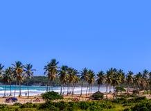 Spiaggia tropicale con le palme, oceano con le onde di bianco e un abbraccio fotografie stock libere da diritti