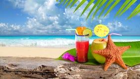Spiaggia tropicale delle stelle marine del cocktail della noce di cocco Immagini Stock