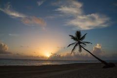 Spiaggia tropicale di alba Immagine Stock