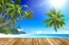 Spiaggia tropicale di paradiso e pavimento di legno della plancia Immagini Stock