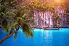 Spiaggia tropicale e barca lunga con le palme in Phi Phi Island, Krabi Tailandia Immagine Stock Libera da Diritti