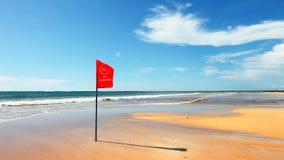 Spiaggia tropicale esotica stock footage