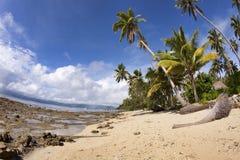 Spiaggia tropicale, Fiji Fotografia Stock