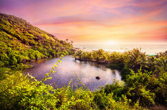 Spiaggia tropicale in Goa Immagine Stock Libera da Diritti