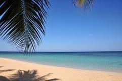 Spiaggia tropicale idillica immagine stock libera da diritti