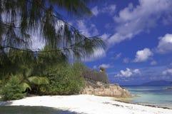 Spiaggia tropicale incontaminata Immagini Stock