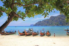 Spiaggia tropicale, isola del phi del phi, Tailandia Fotografia Stock Libera da Diritti