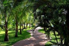 Spiaggia tropicale - Langkawi Fotografia Stock Libera da Diritti