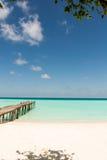 Spiaggia tropicale Maldies Fotografia Stock