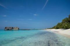 Spiaggia tropicale - Maldive Immagine Stock Libera da Diritti