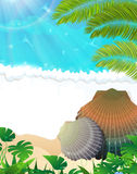 Spiaggia tropicale piena di sole Fotografia Stock